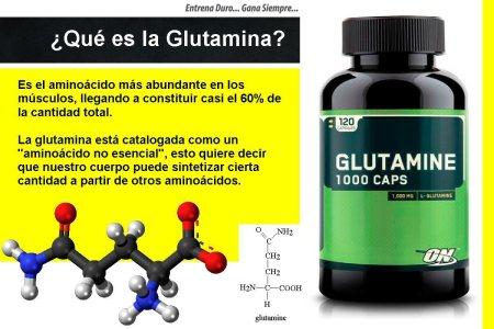 gluatamina qué es