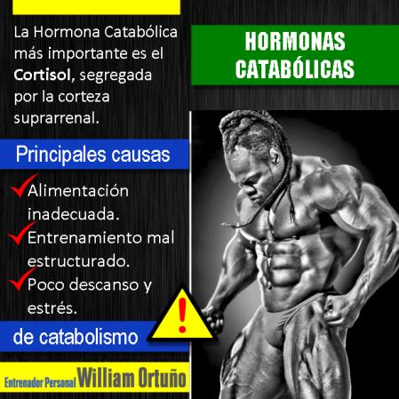 Hormonas catabólicas